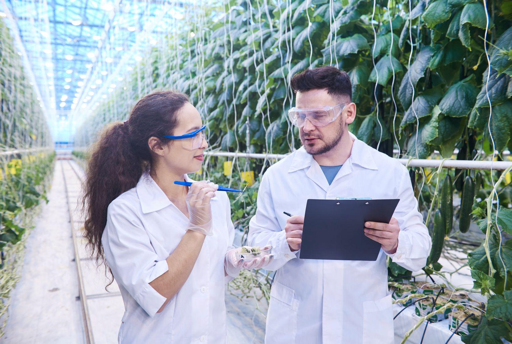 Sistemas de produção agrícola sustentável